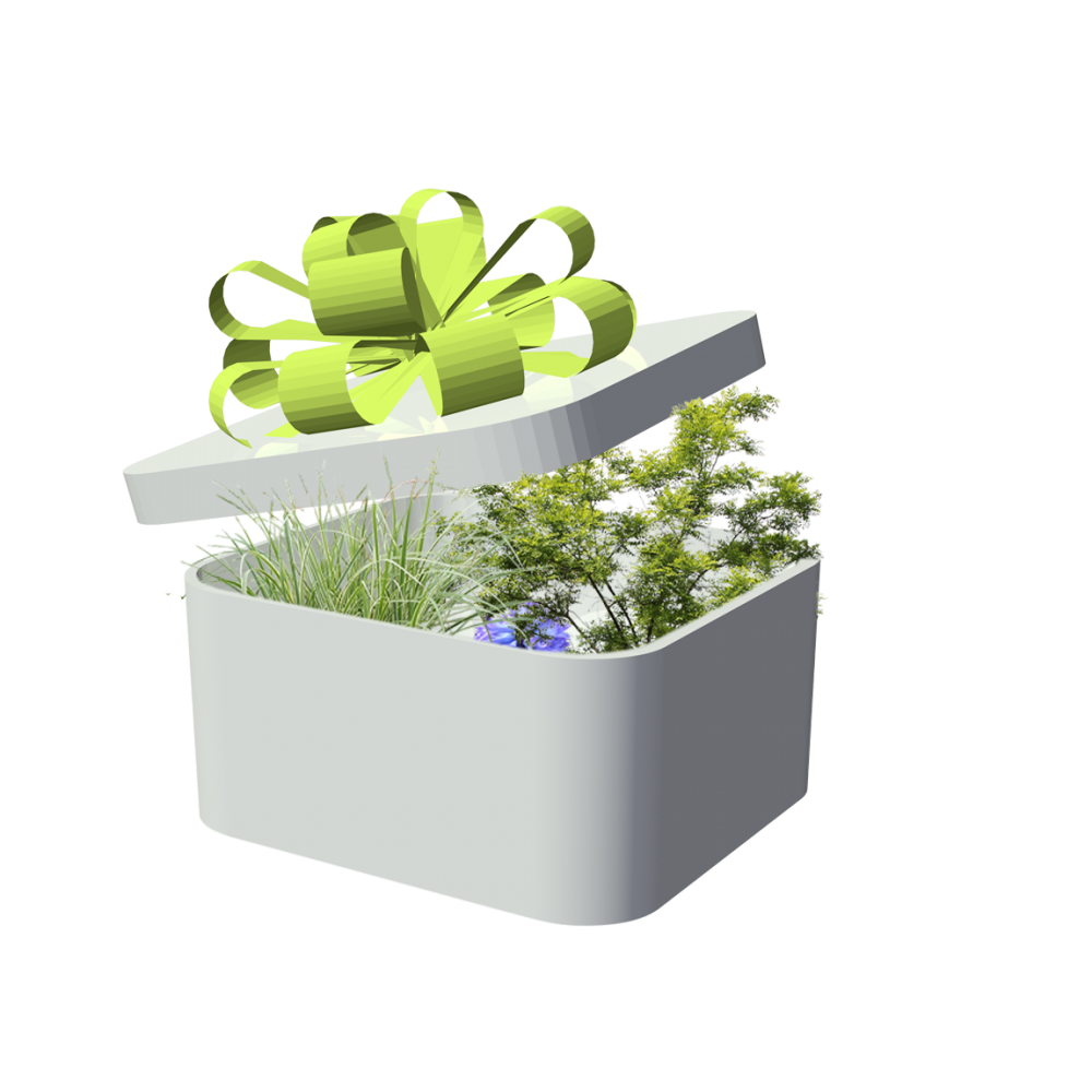 Kostenlos Pflanzen Png Format