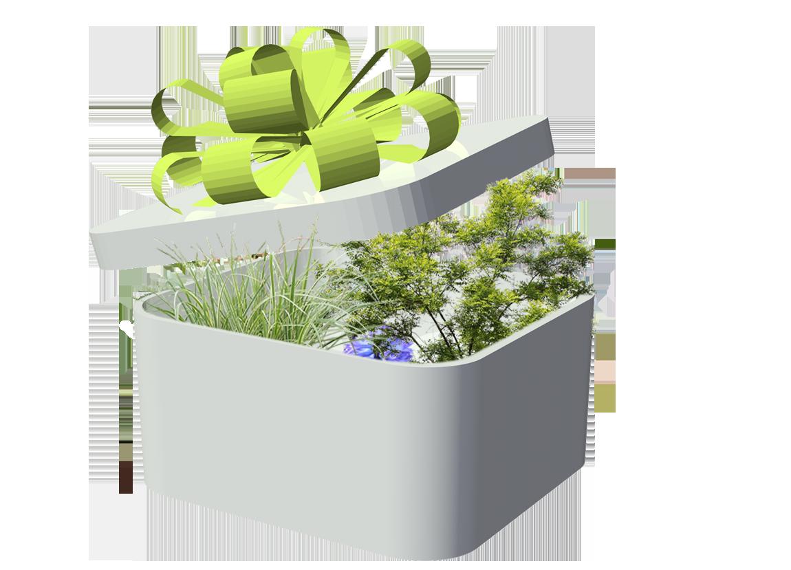 Biblioth que 2d et 3d sp ciale paysagistes fichiers 2d et for Plante 3d gratuit